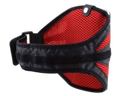 Universal Sports Armband for Phones - Black/Red